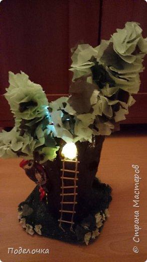 Дом- дерево для наших лесных жителей.  фото 5