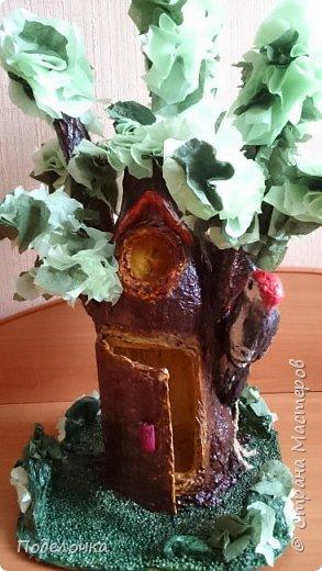 Дом- дерево для наших лесных жителей.  фото 1