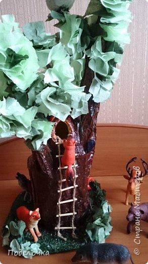 Дом- дерево для наших лесных жителей.  фото 3