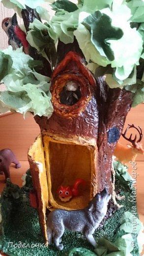 Дом- дерево для наших лесных жителей.  фото 4