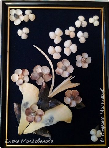 Картины из ракушек на пан бархоте фото 8