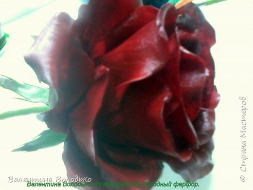 Добрый день мастера и мастерицы!!!!Слепила темно бордовые розы и с фотографировала с нежно лимонными,мне очень понравился контраст,нежность и страсть. фото 8