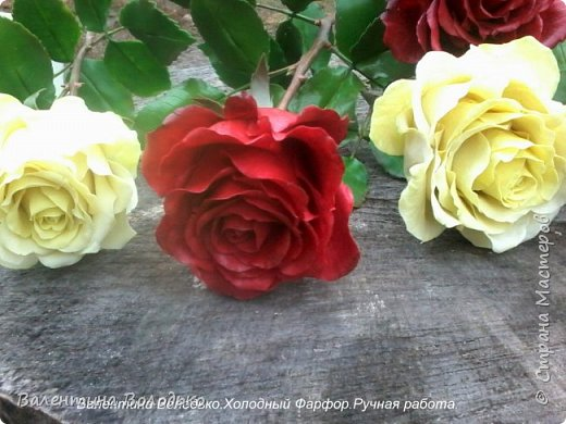 Добрый день мастера и мастерицы!!!!Слепила темно бордовые розы и с фотографировала с нежно лимонными,мне очень понравился контраст,нежность и страсть. фото 10