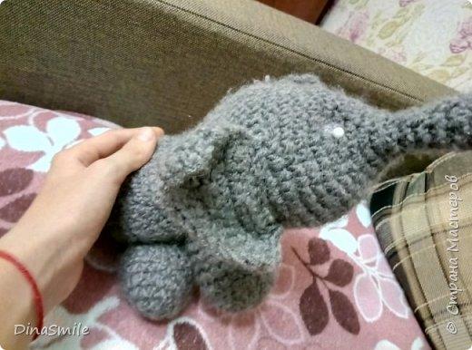 Слон Оливер! фото 3