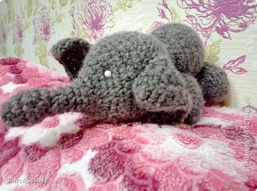 Слон Оливер! фото 1