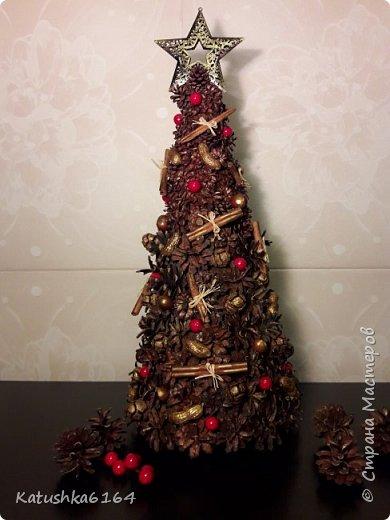 Использовались шишки сосны , шишки кипариса, орехи , палочки корицы , основа картон  фото 4