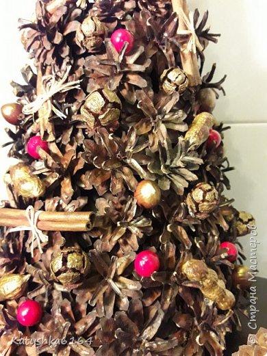 Использовались шишки сосны , шишки кипариса, орехи , палочки корицы , основа картон  фото 3