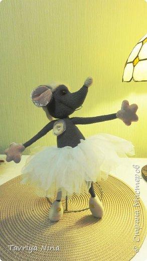 Мышка-балерина фото 1