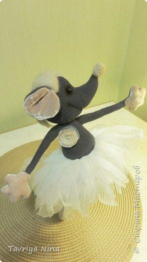 Мышка-балерина фото 3