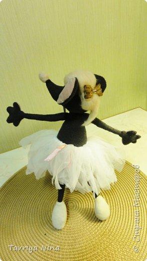 Мышка-балерина фото 2