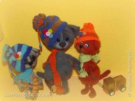 Вязанные игрушки по мк Светланы Перцевой,Веры Терекбаевой и мои. фото 12