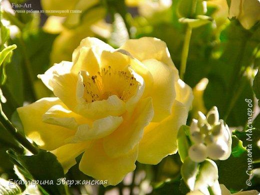 Букет из желтых роз и снежной ягоды фото 19