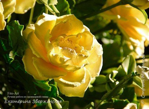Букет из желтых роз и снежной ягоды фото 21