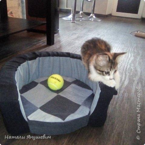 Лежанки для кошек или небольших собачек фото 1