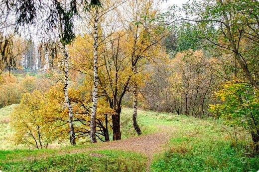 Осень. Просто фото. фото 2