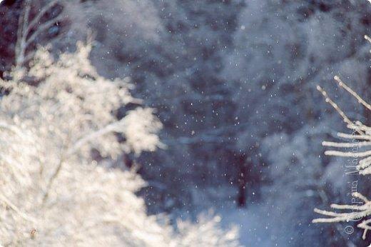 Зима фото 8
