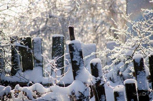 Зима фото 12