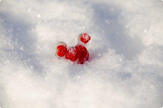 Зима фото 14
