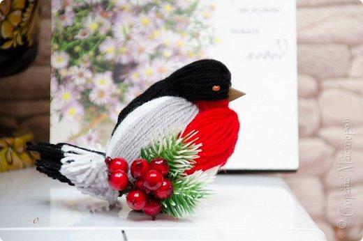 МК птичек в интернете уже много, но покажу свой вариант снегиря с белым брюшком. фото 28