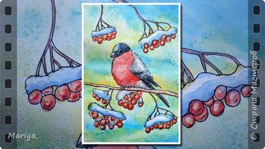 Рисуем открытку на Новый год и Рождество акварелью, линером и солью. Зима, снегирь на рябине. Видео мастер-класс. фото 1