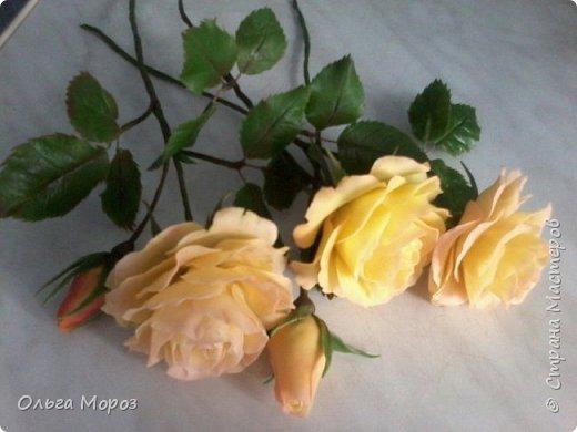 Композиция из трёх чайно-гибридных роз и лесных орешков. фото 2