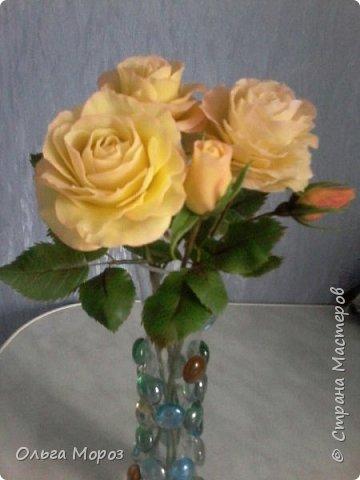 Композиция из трёх чайно-гибридных роз и лесных орешков. фото 3