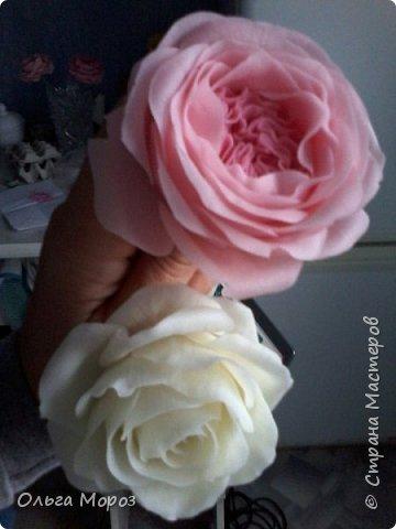 Начала лепить английские розы Остина Девида,подсмотрела МК. у Инны Голубевой и влюбилась!Для основного цвета использовала розовую масляную пастель. фото 4
