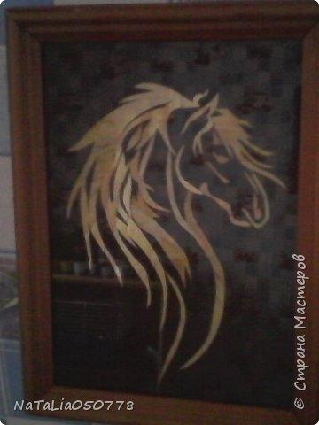 Лошадка Златогривая. фото 2