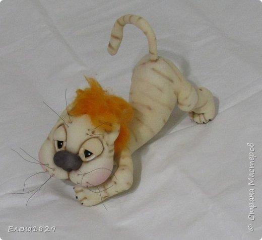 Мой котик Барсик сделанный по мк. Е. Лаврентевой фото 1