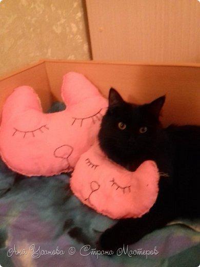 Подушки для себя любимой и любимого кота фото 2