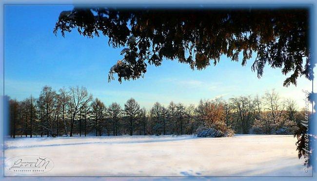 Добрый вечер, дорогие друзья! Вот и настал первый день зимы, радуя нас снегом и лёгким морозцем! Как хочется, чтобы такое белоснежное чудо сохранилось до нашего любимого праздника - до Нового года, который мы так с нетерпением ждём. Уже присматриваем подарки для наших родных и близких, даже что-то стараемся сделать своими руками, чтобы удивить оригинальностью и неповторимостью своего творения. Хозяюшки находят новые рецепты для своих угощений, вспоминают свои самые вкусные блюда, которые они делают исключительно по праздникам. Т.е. полным ходом идёт подготовка к самому сказочно-волшебному празднику! :-) Для вас приготовила несколько зимних фотографий, которые делала в Измайловском парке.  фото 1