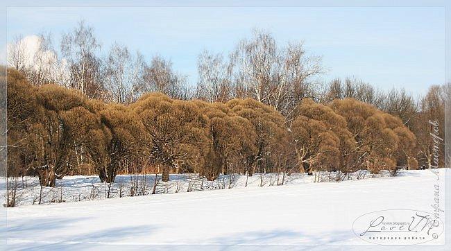 Добрый вечер, дорогие друзья! Вот и настал первый день зимы, радуя нас снегом и лёгким морозцем! Как хочется, чтобы такое белоснежное чудо сохранилось до нашего любимого праздника - до Нового года, который мы так с нетерпением ждём. Уже присматриваем подарки для наших родных и близких, даже что-то стараемся сделать своими руками, чтобы удивить оригинальностью и неповторимостью своего творения. Хозяюшки находят новые рецепты для своих угощений, вспоминают свои самые вкусные блюда, которые они делают исключительно по праздникам. Т.е. полным ходом идёт подготовка к самому сказочно-волшебному празднику! :-) Для вас приготовила несколько зимних фотографий, которые делала в Измайловском парке.  фото 6