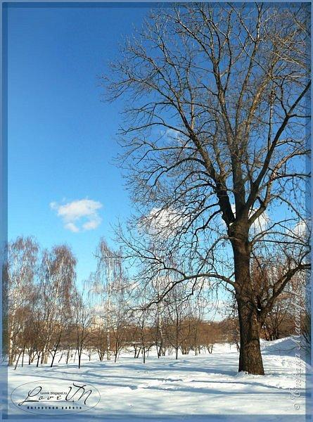 Добрый вечер, дорогие друзья! Вот и настал первый день зимы, радуя нас снегом и лёгким морозцем! Как хочется, чтобы такое белоснежное чудо сохранилось до нашего любимого праздника - до Нового года, который мы так с нетерпением ждём. Уже присматриваем подарки для наших родных и близких, даже что-то стараемся сделать своими руками, чтобы удивить оригинальностью и неповторимостью своего творения. Хозяюшки находят новые рецепты для своих угощений, вспоминают свои самые вкусные блюда, которые они делают исключительно по праздникам. Т.е. полным ходом идёт подготовка к самому сказочно-волшебному празднику! :-) Для вас приготовила несколько зимних фотографий, которые делала в Измайловском парке.  фото 2