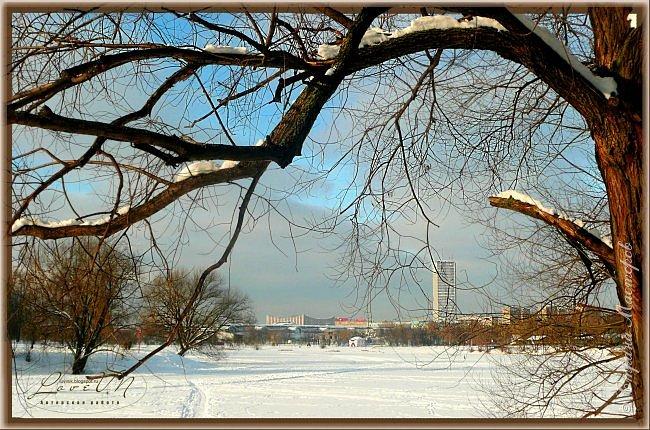 Добрый вечер, дорогие друзья! Вот и настал первый день зимы, радуя нас снегом и лёгким морозцем! Как хочется, чтобы такое белоснежное чудо сохранилось до нашего любимого праздника - до Нового года, который мы так с нетерпением ждём. Уже присматриваем подарки для наших родных и близких, даже что-то стараемся сделать своими руками, чтобы удивить оригинальностью и неповторимостью своего творения. Хозяюшки находят новые рецепты для своих угощений, вспоминают свои самые вкусные блюда, которые они делают исключительно по праздникам. Т.е. полным ходом идёт подготовка к самому сказочно-волшебному празднику! :-) Для вас приготовила несколько зимних фотографий, которые делала в Измайловском парке.  фото 3