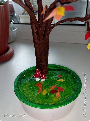 Осень в этом году выдалась на удивление теплой и красочной. Из-за отсутствия дождей и морозов все деревья успели переодеться в ярко-желтые с красными переливами одежды.  Вот и на нашем подоконнике несколько дней стояло маленькие деревце с остатками ярких листочков на ветках. Потом оно переехало жить в детский сад. фото 2