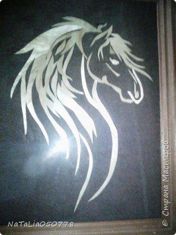 Лошадка Златогривая. фото 1