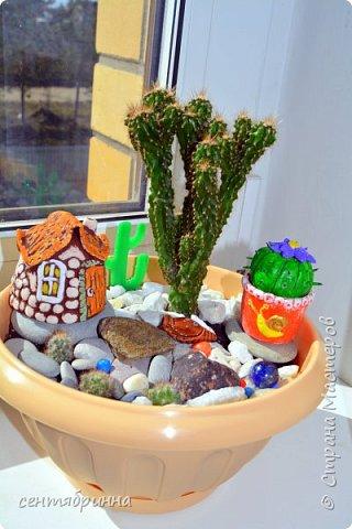 Домик и кактус из соленного теста для цветочной  композиции. фото 1