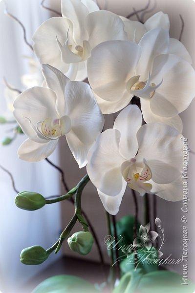 Сделала для себя любимой...))) Цветы орхидеи из турецкого фоамирана, листья - из иранского, а бутоны из зефирного. Декоративные веточки так же рукотворные. фото 4
