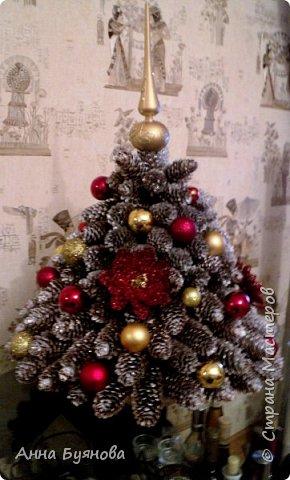 Любуясь на елочки из сосновых шишек я загорелась сделать   новогоднюю красавицу из еловых шишек.Елочка собрана исключительно только из шишек,без применения каркасного конуса. Размер  в диаметре 45, высота 62 см.Припорошила  шишки белой и серебристой краской из баллончиков.Украсила  как на душу легло и вот , что  получилось.