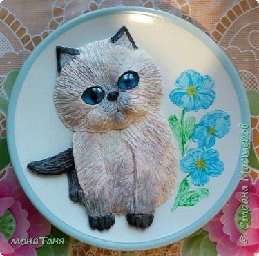 Добрый вечер!!!  У меня новая тарелочка с голубоглазым котенком фото 7