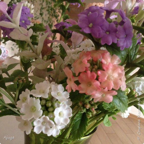 """Вербена- ,,священная ветвь"""" в переводе с латинского. По поверьям этот цветок обладает способностью защищать от болезней, изгонять злых духов, пробуждать интуицию... фото 6"""
