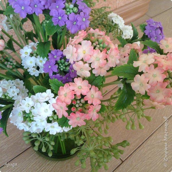 """Вербена- ,,священная ветвь"""" в переводе с латинского. По поверьям этот цветок обладает способностью защищать от болезней, изгонять злых духов, пробуждать интуицию... фото 15"""