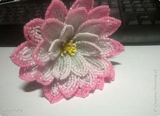 Представляю Вашему вниманию мастер-класс по плетению цветка лотоса из бисера. фото 29