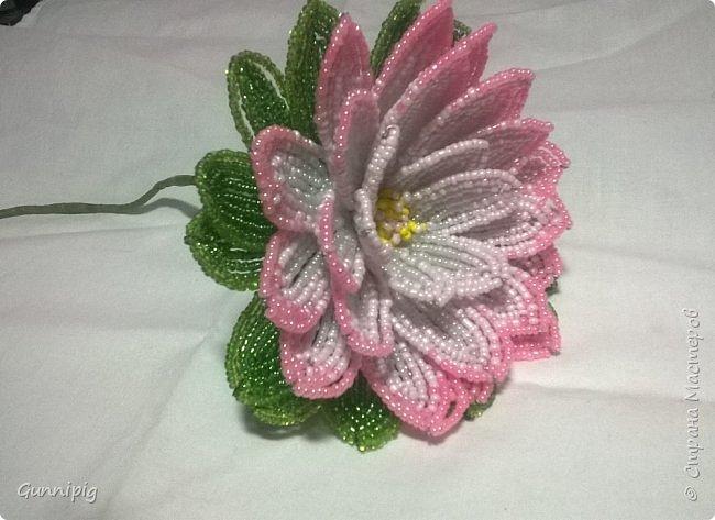 Представляю Вашему вниманию мастер-класс по плетению цветка лотоса из бисера. фото 41