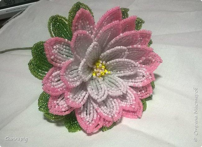 Представляю Вашему вниманию мастер-класс по плетению цветка лотоса из бисера. фото 42