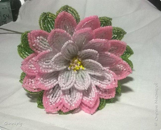Представляю Вашему вниманию мастер-класс по плетению цветка лотоса из бисера. фото 43