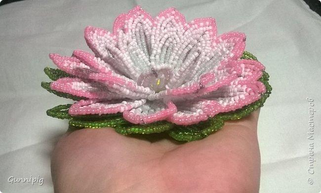 Представляю Вашему вниманию мастер-класс по плетению цветка лотоса из бисера. фото 49