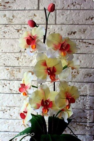 Орхидеи сделаны в технике кристальные цветы. Благодаря корейской бумаге можно делать цветы, которые не будут отличаться от оригинала.