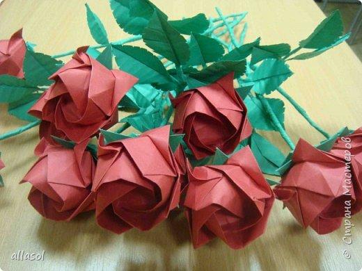 Букет из роз Кавасаки с новыми чашелистиками фото 12