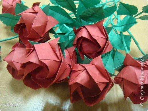 Букет из роз Кавасаки с новыми чашелистиками фото 11